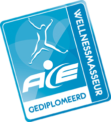 Gediplomeerd Wellness masseur Edward Schepers